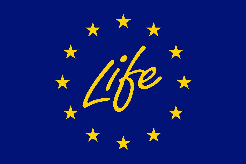 life-programa